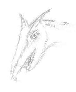 dragon-head-sketch