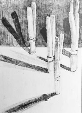 12 Pencil#2