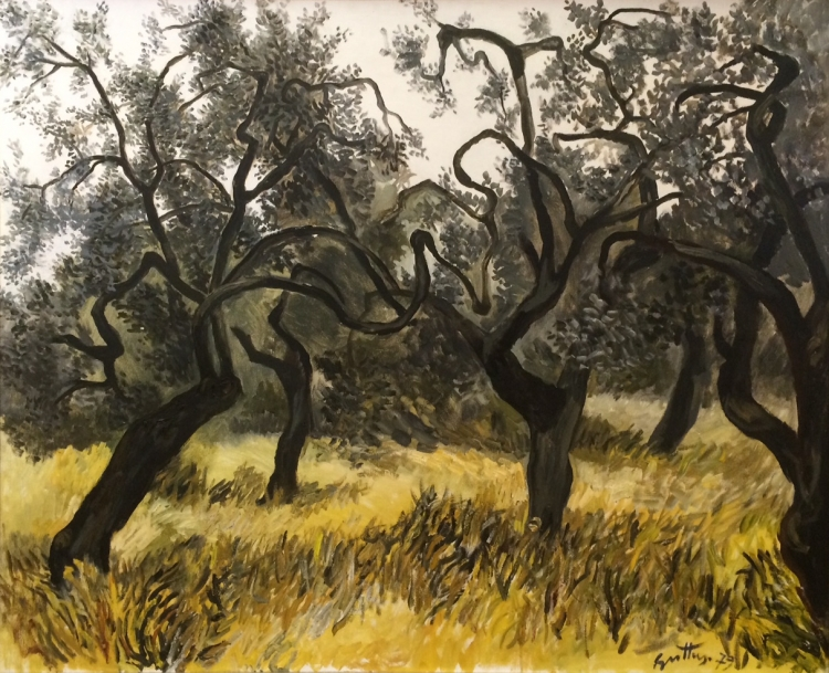 OLIVE TREES OF PUGLIA
