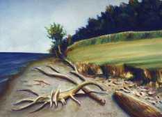 lake-ontario-shore-1997