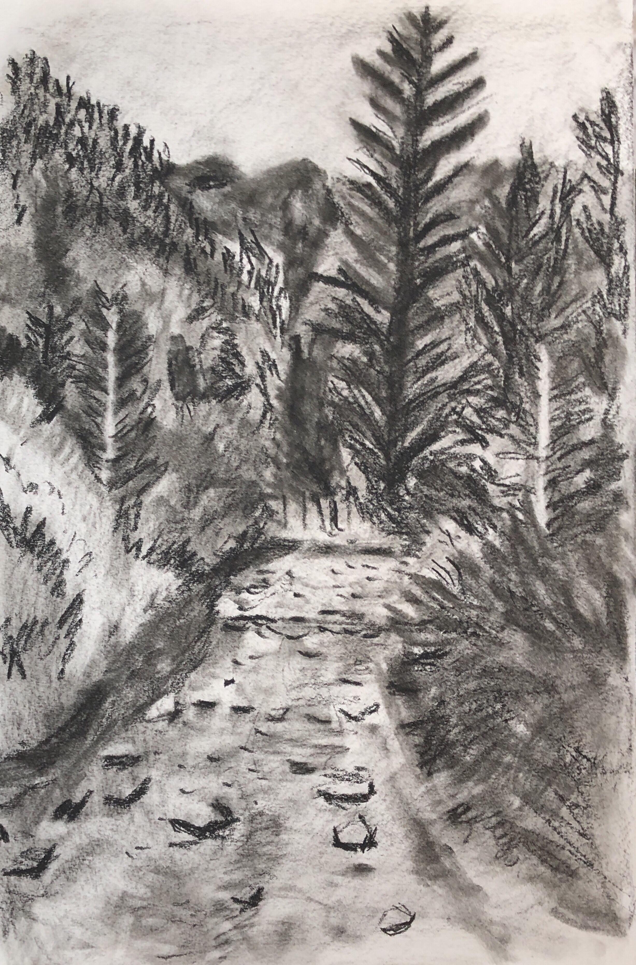 Elbigenalp Mountain Stream , A4, black conte.