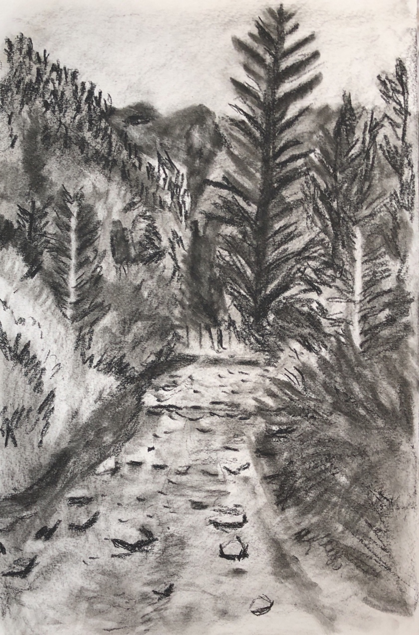 Elbigenalp Mountain Stream , A4, black conte.